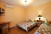 Комната - однокомнатный номер с кухней