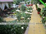 Зеленть - Мини-отель Валента - Курортное